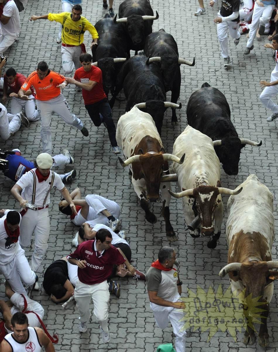 【外人】スペイン3大祭りで男も女もテンション上げまくりでおっぱいポロリしまくるポルノ画像 2646