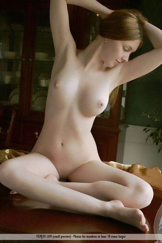 【外人】 処女のように美しいおっぱいを持つポーランドのミーガン(Megan)がヌード撮影してるポルノ画像 1419