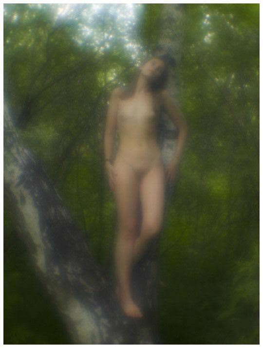 【外人】大自然でヌードグラビア撮影する妖精な白人美女達の野外露出ポルノ画像 479