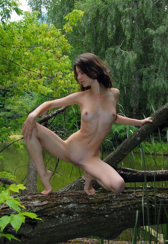 【外人】大自然でヌードグラビア撮影する妖精な白人美女達の野外露出ポルノ画像 592