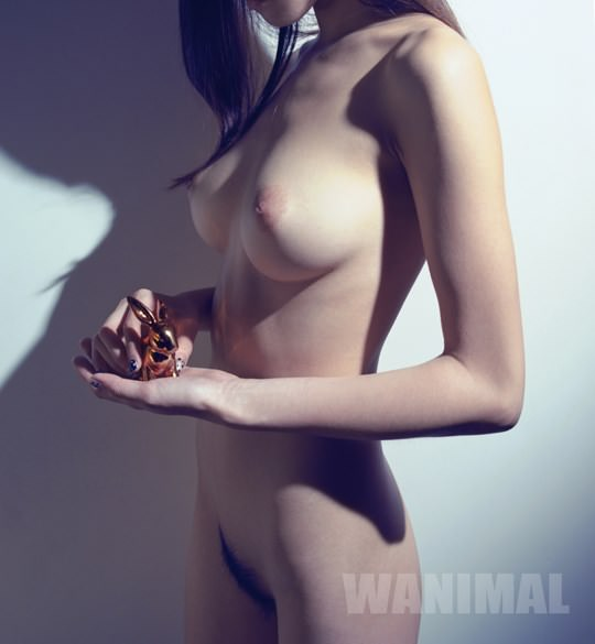 【外人】中国人写真家ワニマル(WANIMAL)の中国人美女のヌードをアートにしたポルノ画像 2329