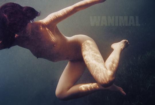 【外人】中国人写真家ワニマル(WANIMAL)の中国人美女のヌードをアートにしたポルノ画像 3515