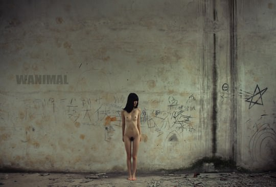 【外人】中国人写真家ワニマル(WANIMAL)の中国人美女のヌードをアートにしたポルノ画像 555