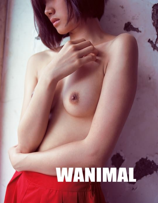 【外人】中国人写真家ワニマル(WANIMAL)の中国人美女のヌードをアートにしたポルノ画像 944