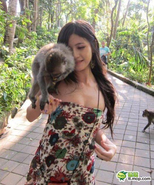 SNSにビキニをアップするセクシーアジアン娘が猿に襲われおっぱいポロリwwwww 0719
