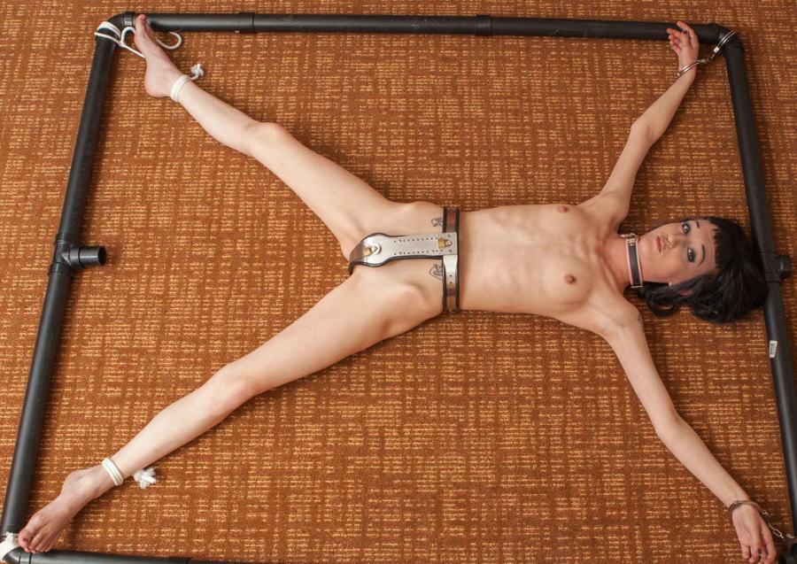 【SMグッズ】『マジでマニア向けww』オマンコに装着して調教されちゃう外国人ポルノエロ画像wwwww 12 11